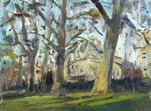 Plane Trees at Green Park Winter Sun